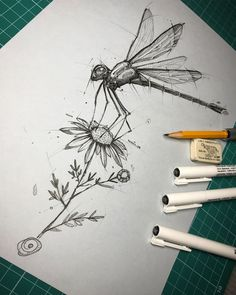 Psdelux is a pencil sketch artist based in Tatabánya, Hungary. He usually draws animal sketches. Psdelux also makes digital drawings. Animal Sketches, Animal Drawings, Drawing Sketches, Pencil Drawings, Insect Tattoo, Sketch Inspiration, Fish Art, Art Sketchbook, Pencil Art