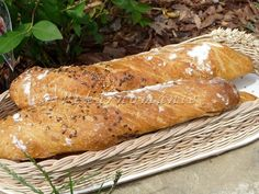 kváskové kořenové bagety - My site Ciabatta, Korn, Pavlova, Bread Recipes, Carrots, Sandwiches, Good Food, Homemade, Food And Drink