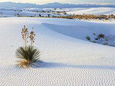 White desert http://www.mobdecor.com/b2b/wallpaper/64614_white_desert
