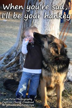 Yep.....had to laugh.... They are right there wanting to know whats wrong....<3..... #german #shepherd #dog