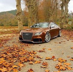 Audi RS5 - teakbrown