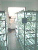 laboratorio de cultivo de tejidos vegetales - Buscar con Google