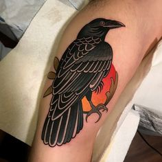 raven tattoo by dave wah at stay humble tattoo company in baltimore maryland the. - raven tattoo by dave wah at stay humble tattoo company in baltimore maryland the best tattoo shop a - Pretty Tattoos, Unique Tattoos, Beautiful Tattoos, Cool Tattoos, Traditional Tattoo Raven, Traditional Tattoo Design, Crow Tattoo Design, Tattoo Designs, Stay Humble Tattoo