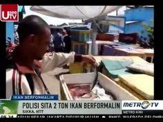 Polisi Sita 2 Ton Ikan Berformalin di Sikka NTT - Berita Terbaru Hari in...