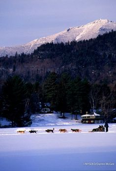 the best attitude 3ef59 7ad2a Whiteface mountain towers over the village of Lake Placid, home to the 1932  and (