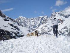 A picture I made in Zermatt