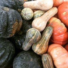"""#abóbora #moranga #cabotian #paulista #pumpkin #squash #kabocha #cinderella #food #nofishnoseafood ##foodporn #foodlovers #instafood #foodgasm…"""