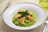 Asparagus Rice with Seared Scallops | #food | #japan | #cooking | Surprise your family and friends with the beautiful color and the tender taste of this asparagus dish. For a fresh, crisp asparagus, look for stalks that are straight and firm, and do not have a strong odor.