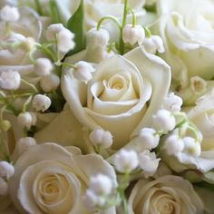 Bouquet, Lily of the valley, Bridal bouquet, White bouquet, Bianca roses