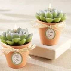 Cacti And Succulent Wedding Decor Ideas - Weddingomania Plant Wedding Favors, Beach Wedding Favors, Unique Wedding Favors, Cactus Wedding, Diy Wedding, Wedding Cake, Wedding Gifts, Wedding Ideas, Candle Favors