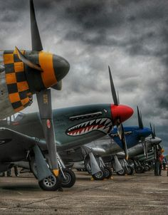WWII fighter plane warbirds