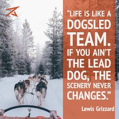 ❤️Hit That Share Button To Motivate Your Friends & Family❤️ ▬▬▬▬▬▬▬▬▬▬▬▬▬▬▬▬▬▬▬ #MondayMotivation #MotivationMonday #quotes #quoteoftheday #motivationalquotes #PuppyLove #PawPrints #Happiness #DogSled #LancasterPuppies www.LancasterPuppies.com Puppy Quotes, Lancaster Puppies, Leadership Coaching, Never Change, Entrepreneur Quotes, Business Entrepreneur, Life Is Like, Puppies For Sale, Monday Motivation