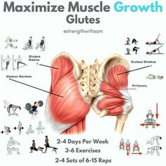 muscle growth glutes