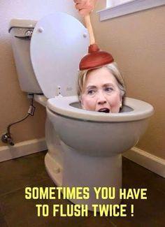 Big turds just won't flush!!