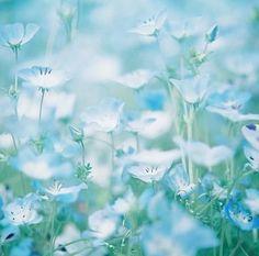 zapach wiosny :-)  www.KuferArt.pl