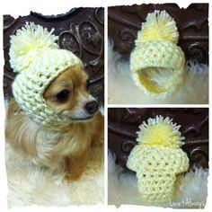 Winter Dog Hat * Ugly Dog Hat * Handmade Crochet * Size XS Extra Small * Puppy