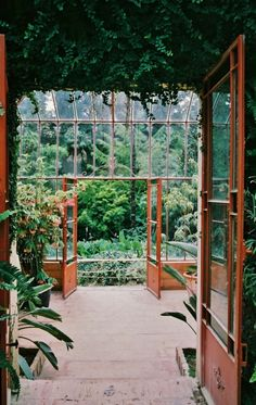 jacindaelena:{ greenhouse } if I extend the bank of doors toward the pool is this what I would have?