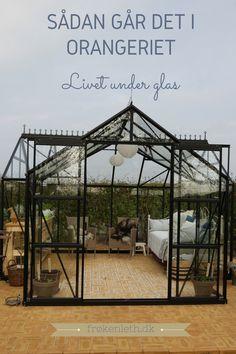 Follow my blog and see How my gardenlife turns out :-)  Følg min blog og se hvordan det går med mit haveliv :-)