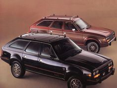 AMC Eagle 4x4.  It was not the prettiest car on the block but man was it tough and could handle icy snowy roads.