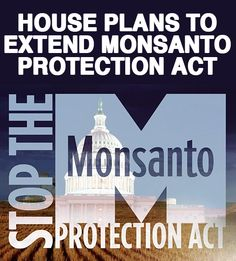 "Smart Health Talk Alert: WASHINGTON 9-11-13: Monsanto Protection Act included in House appropriations bill that funds through 12-13. Center for Food Safety: Provision would DEPRIVE courts of authority to stop sale/planting of potentially hazardous, GMO crops & force USDA to permit continued planting of such crops upon request. ""100s of 1,000s of Americans called elected officials to say didn't want Monsanto Protection Act' past spring. Its inclusion is a slap in the face to the American…"