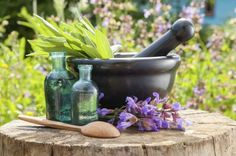 Healing Herb Plants: Tips On Growing A Medicinal Herb Garden - The kitchen herb garden is traditionally a small section of the garden where culinary and healing herb plants are grown along with fruits, veggies and ornamentals to provide easy access and aesthetic value. Learn about plants with healing effects in this article.