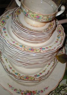 i have this set of china. it belonged to my husbandu0027s great grandmother. & Vintage Dinnerware Set Mount Clemens Pottery Mildred Pattern Antique ...