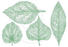 Green vein leaves, skeleton leaf silhouette, spring leaves, digital clipart, clip art set, drawing, illustration, scrapbooking, download