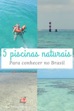 Conheça 5 piscinas de corais imperdíveis no Brasil e saiba o que fazer para ajudar a preservá-las! #brasil #blogdeviagem #mergulho Places Around The World, Around The Worlds, Places To Travel, Places To Visit, Van Life, Brazil, Dream Catcher, Travel Tips, Tourism