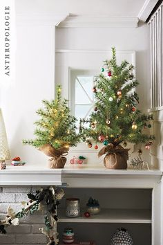 Burlap Wrapped Decorative Tree. Ready your home for the approaching festivities with our range of Christmas decorations. From small Christmas tree table centerpieces to tinseled jellyfish ornaments, we've got all your treasures for the tree covered.