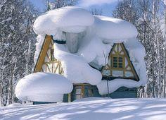 "Like Sandy always said: ""Looks like Marshmallow Creme""   Snow Cabin, Hokkaida, Japan photo via jill"
