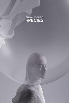 ENDANGERED SPECIES_SPLASH Calendar 2020 on Behance Shampoo Bottles, Calendar 2020, Type Setting, Endangered Species, Bottle Design, Image Boards, Creative Director, Climate Change, Art Direction