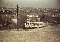 1938 orig: FORTEPAN BUDAPEST XII. Fogaskerekű a Fogaskerekű utca felől fényképezve, háttérben a Rózsadomb és az egykori Szőlészeti Kutatóintézet.