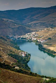 The Douro Valley in #Portugal