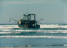 "Stuck on the Beach south of the jetty in Newport Oregon ... They meant to cross the bar but .... ""Missed it by that much"" I was trying to remember the name of this fishing boat but I can't remember I just remember my dear friend D'Bone da Cajun worked this boat. He loved his family, fishing and drawing. And his momma used to send him bbq dried shrimp which he always shared."