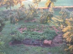 """Ruth Stout"" gardening plot heavy mulch model of gardening"
