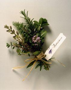 Come i fiori, anche erbe e spezie hanno un loro linguaggio: perché non comporre un bouquet profumato in verde e giocare a scoprirne il significato?