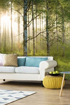 Bring the outdoors in with a stunning birch forest tree wallpaper. Tree Wallpaper Living Room, Tree Wallpaper Mural, Tree Wallpaper Iphone, Tree Wall Murals, Forest Wallpaper, Photo Wallpaper, Spring Wallpaper, Tree Effect Wallpaper, Bedroom Wallpaper