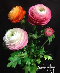 Most up-to-date Pics sugar Ranunculus Thoughts In the event that its heyday lamps are certainly one involving nature's secrets, viewing the claw-like tube Sugar Paste Flowers, Icing Flowers, Fondant Flowers, Clay Flowers, Faux Flowers, Paper Flowers, Flower Crafts, Flower Art, Fondant Decorations