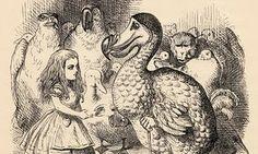 Alice meets the dodo