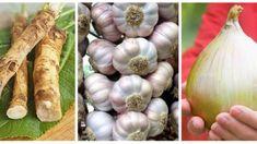Trik, ako ju môžete u vás doma zrýchliť až trojnásobne! Onion, Garlic, Vegetables, Health, Food, Medicine, Embroidery Ideas, Hand Embroidery, Health Care