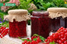 Alcohol is a very effective preservative for fruit. Brandy is most often used, but you can also try whisky, gin, rum or vodka — all contain enough alcohol to kill most spoilage micro-organisms. Here are some tips to help you get started. Red Currant Jam, Methods Of Food Preservation, Pots, Water Bath Canning, Alcohol, Home Canning, Food System, Small Meals, Food Trends