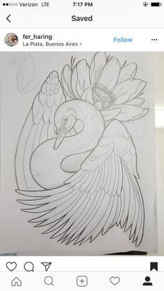 Best 12 Just the flower with the swan Bird Drawings, Animal Drawings, Tattoo Drawings, Pencil Drawings, Schwan Tattoo, Tattoo Fleur, Tiny Bird Tattoos, Geniale Tattoos, Beautiful Rangoli Designs