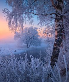 Image discovered by Find images and videos about winter and snow on We Heart It - the app to get lost in what you love. Winter Photography, Landscape Photography, Nature Photography, Nature Pictures, Beautiful Pictures, Winter Love, Winter Snow, Winter Magic, Winter Scenery
