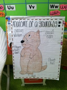 Groundhog Day anchor chart. Anatomy of a Groundhog labeling.