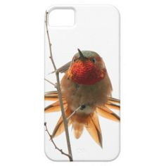 ==>Discount          iPhone 5 Case           iPhone 5 Case today price drop and special promotion. Get The best buyDiscount Deals          iPhone 5 Case Review from Associated Store with this Deal...Cleck Hot Deals >>> http://www.zazzle.com/iphone_5_case-179555816519416018?rf=238627982471231924&zbar=1&tc=terrest