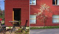 M i MA: Usedom in Schwedenrot. Oder: Ein guter Ort für bewegungshungrige Urlauber.