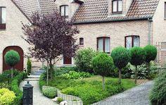 Traumgarten anlegen: Einladender Vorgarten - Gartengestaltung - DAS HAUS