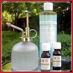 Did you know essential oils can be used in the garden to protect your plants from insects, pests and disease? Combine 25 drops of both peppermint and sweet orange essential oil with 1 tsp unscented liquid soap. Dissolve the mixture in 32oz of water, pour into a mister bottle, apply to plants, and bugs be gone! #GreenCleaning #sproutsfm