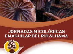 Las XI Jornadas Micológicas de #AguilarDelRíoAlhama se celebrarán durante este próximo fin de semana con recolección, clasificación, exposición y degustación de hongos y setas. #LaRiojaApetece