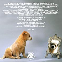 #67 #SorriderePerEssereFelici #SmileIsFashion www.felicementestressati.it